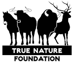 True Nature Foundation